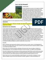 PROBLEMAS DE ESCACES EN EL SECTOR PRIMARIO.docx