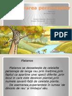 Caracterizarea personajelor.pptx
