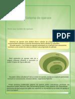 sisteme_de_operare.pdf