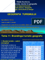 Tema 11. Brandingul turistic geografic.pdf