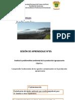 Semana 05 _Problemas Ambientales (1)
