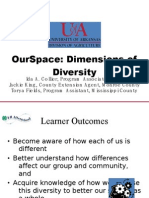 OurSpace Dimensions of Diversity