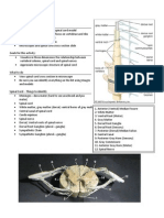 Spinal Cord Lab Sp11