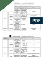 RESUMEN COMPETENCIAS, CONTRIBUCIONES, CRITERIOS Y EVIDENCIAS) (2)