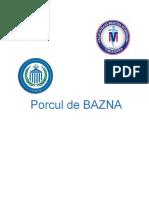 Porcul de BAZNA Gavrila Alexandru 2.2.08.docx