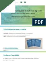 De l'analyse des risques à La Resilience Régionale Exemple suisse Serec