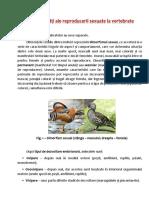 particularitati_ale_reproducerii_sexuate_la_vertebrate