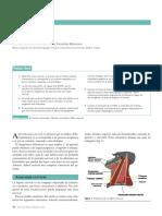 MASA CERVICAL.pdf