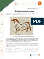 caballos, domesticacion