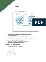 Study Guide for Biochem Semester 1
