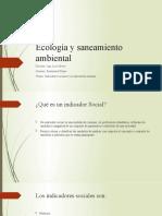 Indicadores sociales y la dimension humana.pptx