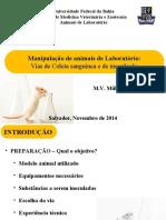 Coleta material animal lab.ppt