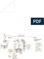 -mapa-conceptual-e-la-vejiga-convertido