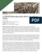 FAUNA Y FLORA.pdf