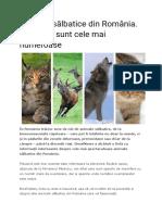 Animale sălbatice din România.odt