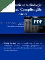 prelegere_caria_ROM
