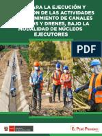 01. Guia de Ejecucion de Amcrd Nucleos Ejecutores.pdf