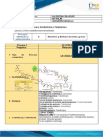 Bioquimica_56_Metabolismo_Valentina_Salazar (1)