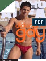 Dicionário Gay