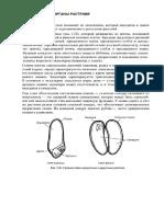 5. Анатомия растений. Генеративные органы