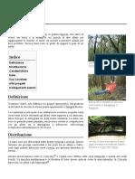 Liana.pdf