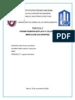 Medina-Gómez -Jacqueline-Lab. 2IM37 Hidrocarburos-Prac.-3-Cromatografía.pdf