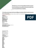 SQL DINAMIC 3 34