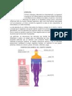 FISIOLOGÍA DE LOS NUTRIENTES. bromatología resumendocx