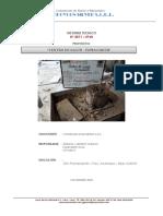 2960_Proctor_INFORME COMPLETO (1).pdf