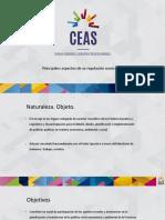 Consejo Económico, Social y Ambiental