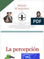 PRESENTACION_PERCEPCION_2020