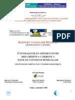 Contraintes Et Opportunites Des Credits Carbone Dans Le Contexte Senegalais Secteurs Des Forets Et de Lenergie Domestique