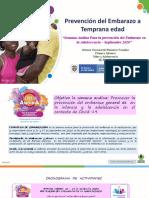 Semana Andina EMPEA 2020 - (1).pptx