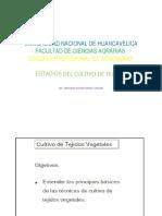 Establecimiento de cultivos de tejidos in vitro 2019