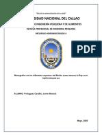 Monografía Bonito y Raya con espina