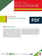 Fiche Technique Lavande 2.pdf