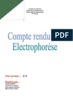 3 electrophorese v