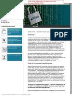 2008Estganos-Cibercrimenyciberterror
