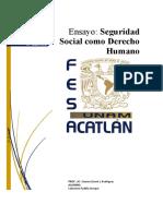 ENSAYO SEGURIDAD SOCIAL COMO DERECHO HUMANO.docx