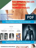 PERSPECTIVA GENERAL DE LOS TRASTORNOS GASTROINTESTINAL.pptx