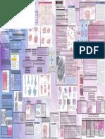 tejido epitelial y conecticvo diego valdiviezo 4TO SEMESTRE.pdf