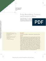 Folate biosynthesis_hanson