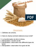 les_etapes_pour_obtenir_la_farine