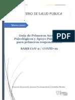 GUÍA PAP COVID-19 (1)-1
