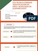 ENTREVISTA TÉCNICA FORENSE-DIAPOSITIVAS ACTUAL CRIMINALISTICA
