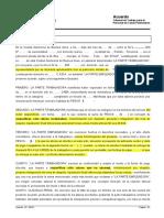 1-4-5-FORMULARIO DE ACUERDO ESPONTANEO-Capitulo IV.doc
