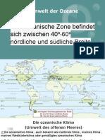 Die Umwelt der Ozeane (1).pdf