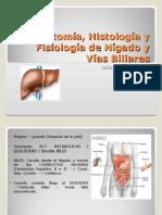 20110413_anatom__a_histolog__a_y_fisiolog__a_de_h__gado_y