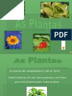 as-plantas-1211227982336598-8