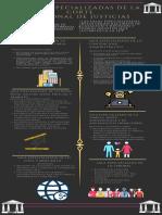 Salas Especializadas de la Corte Nacional de Justicias (3).pdf